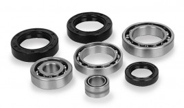Quadboss Differential Bearing and Seal Kit