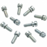 S&S Cycle Slotted Screws with Lock Washer