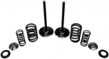 Kibblewhite Precision Intake Only Stainless Conversion Valve/Spring Kit