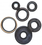 Winderosa Oil Seal Kit