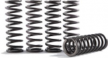Hinson Racing Hi-Temp Clutch Spring Kit