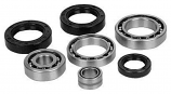 All Balls Differential Seal Only Kit