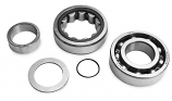 Jims Outer Bearing Kit