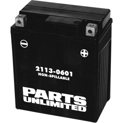 Parts Unlimited Factory-Activated AGM Maintenance-Free Battery
