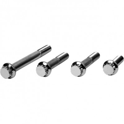 Diamond Engineering Front Caliper Mount 12-Point Polished Stainless Individual Brake Bolt Kit